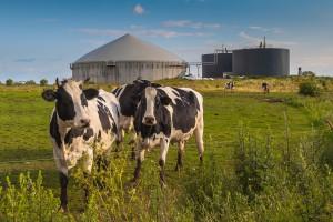 Rusza dofinansowanie do biogazowni i elektrowni wodnych z AgroEnergia