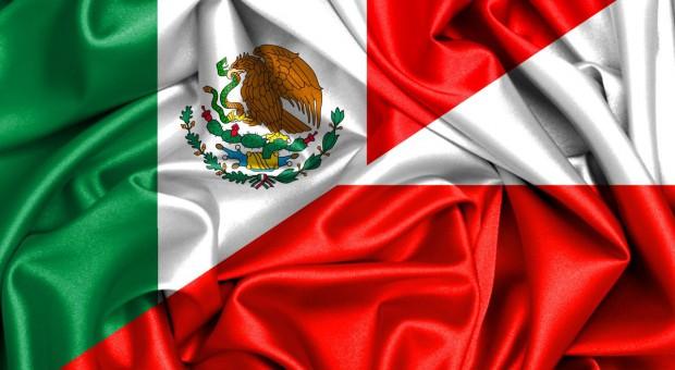 Kwieciński: W Meksyku duże szanse ma polska branża transportowa