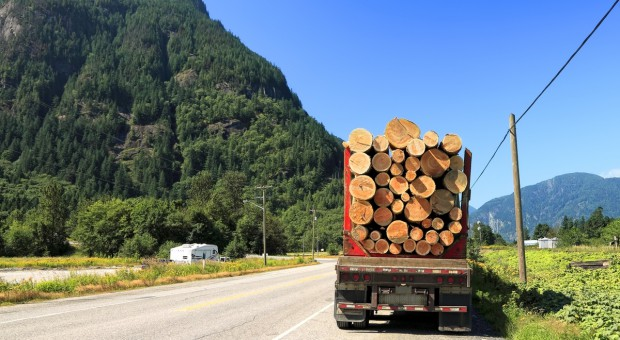 Kanada chce bronić swych interesów, gdy USA wprowadziły cła na import drewna