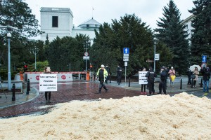 Trociny przed Sejmem na znak sprzeciwu wobec ustawy dot. wycinki drzew