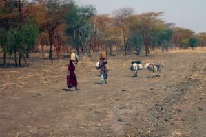 Wobec klęski głodu Sudan Południowy znosi cła na import żywności
