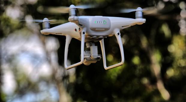 Drony jako wykrywacze chorób roślin