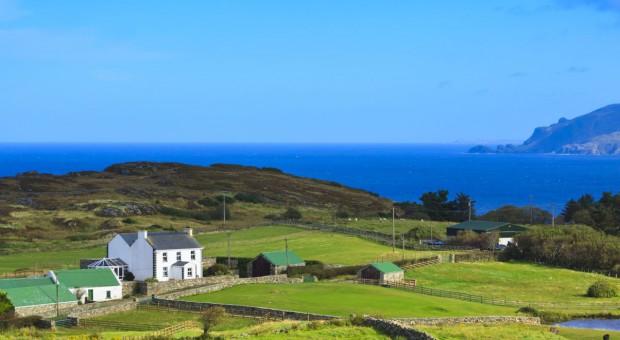 W Irlandii zakończono przyjmowanie wniosków JPO