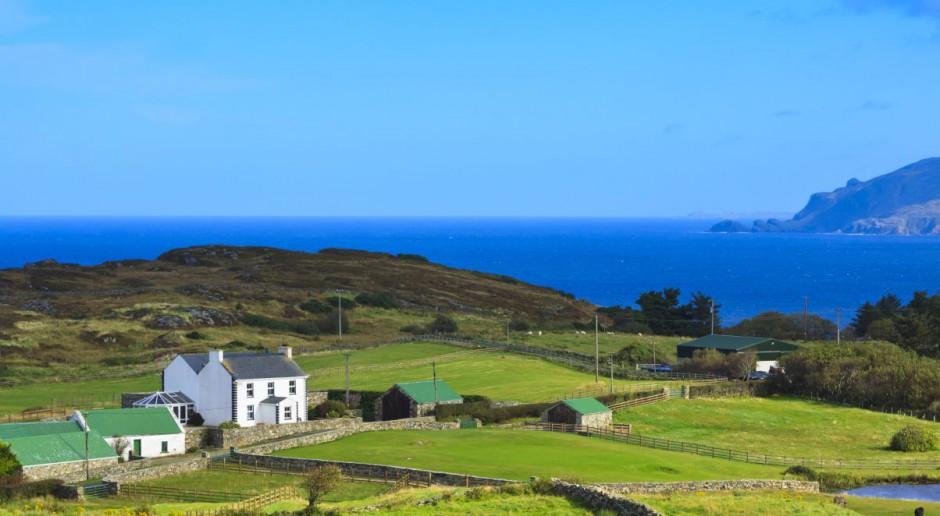 Irlandia: Rolnicy osiągnęli wyższe dochody
