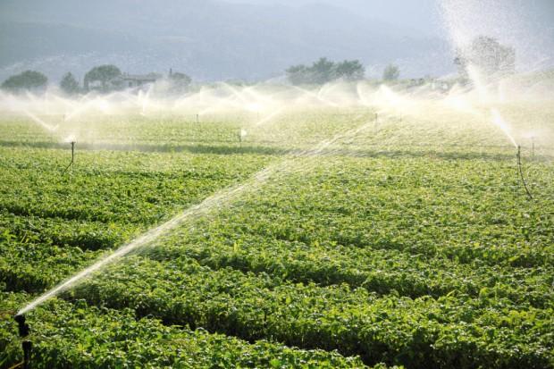Sejm rozpocznie prace nad projektem nowego Prawa wodnego