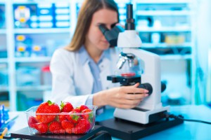Łódzcy naukowcy pracują nad opakowaniem, które pokaże czy żywność jest świeża