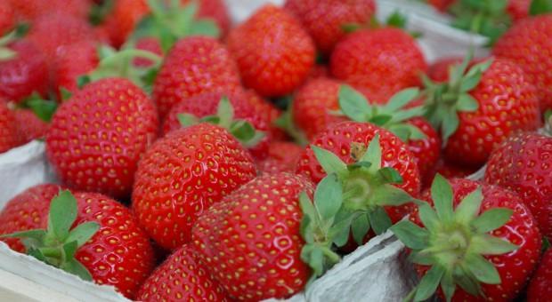 Węgry: Truskawek mniej i droższe z powodu przymrozków