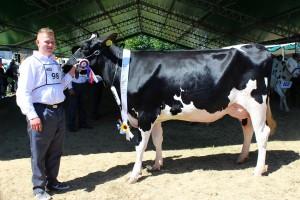 Czempion w kategorii krowy PHF odmiana HO i RW w I laktacji