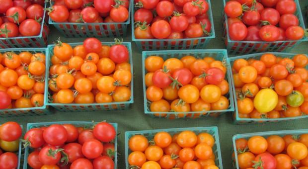 Rosja odwołuje ograniczenia w handlu rolno-spożywczym z Turcją