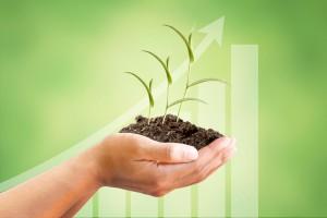 25 proc. gruntów rolnych pod rolnictwo ekologiczne