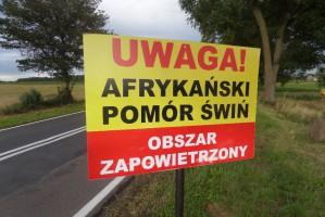 KZP-PTCh: Rozdzielenie ASF dzików i świń domowych powoli staje się faktem