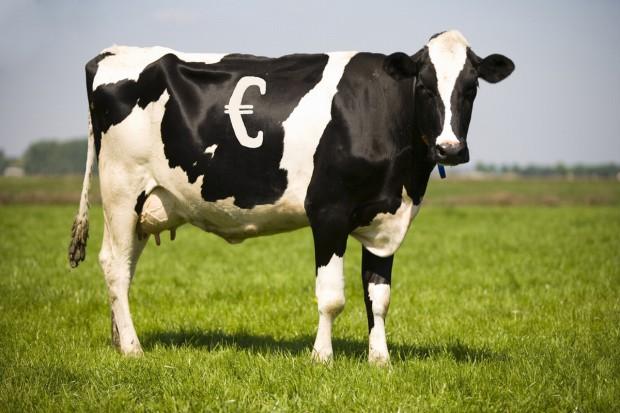 Międzynarodowe obrady producentów mleka COPA COGECA