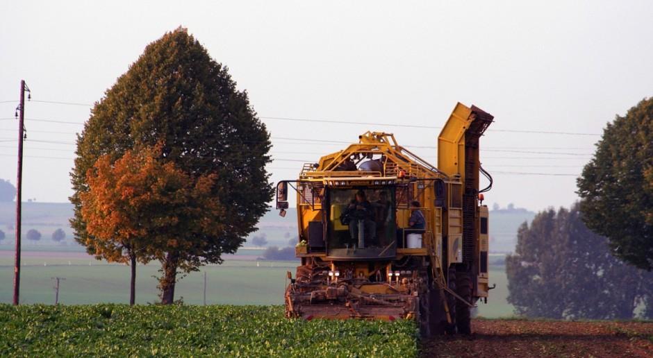 Rosja: Prognoza mniejszych zbiorów roślin uprawnych