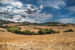 Jak zaskarżyć wykupienie ziemi przez ANR?