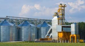 Import zboża z Ukrainy – fakty i mity