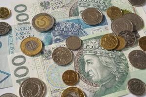 ARiMR wypłaciła ponad 97 proc. dopłat bezpośrednich za 2016 r.