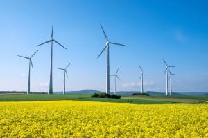 Raport: Energia odnawialna zdominuje rynek w ciągu dwóch dekad