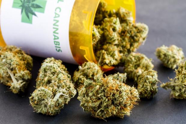 Dlaczego marihuana lecznicza nie może być z Polski?