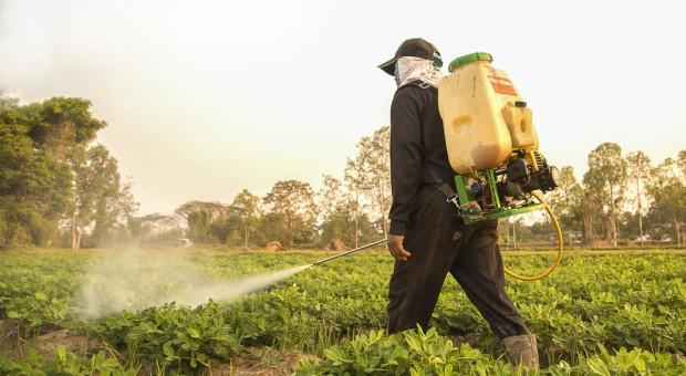Gdańsk: Skradziono środki ochrony roślin mogące stwarzać zagrożenie