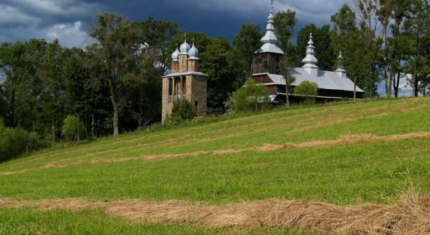 W Bieszczadach leśne sianokosy; skoszonych zostanie 1,5 tys. ha śródleśnych łąk