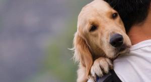 Puda: w nowym projekcie ustawy o ochronie zwierząt ma być Inspekcja Ochrony Zwierząt podlegająca MSWiA