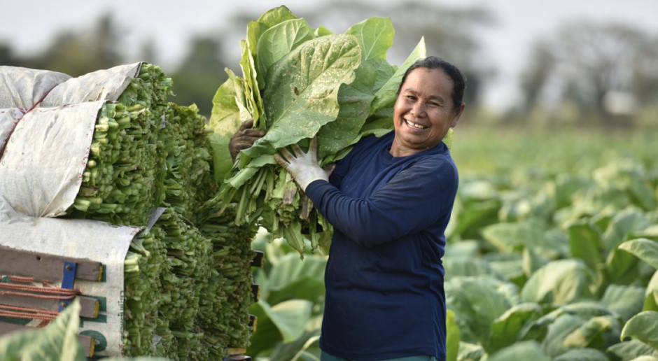 Kuba: Do 20 lat przedłużono umowy dzierżawne z indywidualnymi rolnikami
