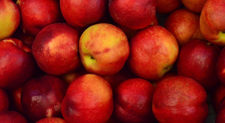70 mln euro więcej na wspieranie europejskich producentów owoców
