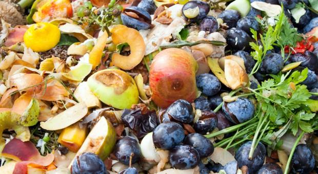 Banki Żywności: 1,3 mld. ton żywności rocznie marnuje się na świecie