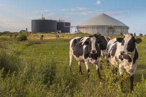 Jurgiel: Dzięki rolniczym spółdzielniom i klastrom energetycznym prąd może być tańszy