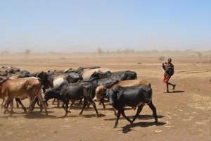 UE zwiększa pomoc dla krajów afrykańskich