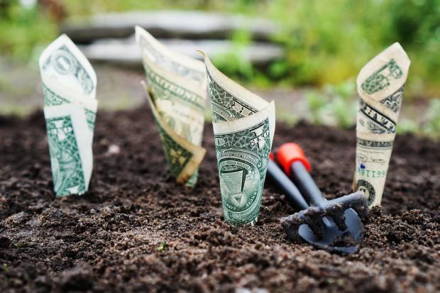 Rolnicy coraz częściej inwestują