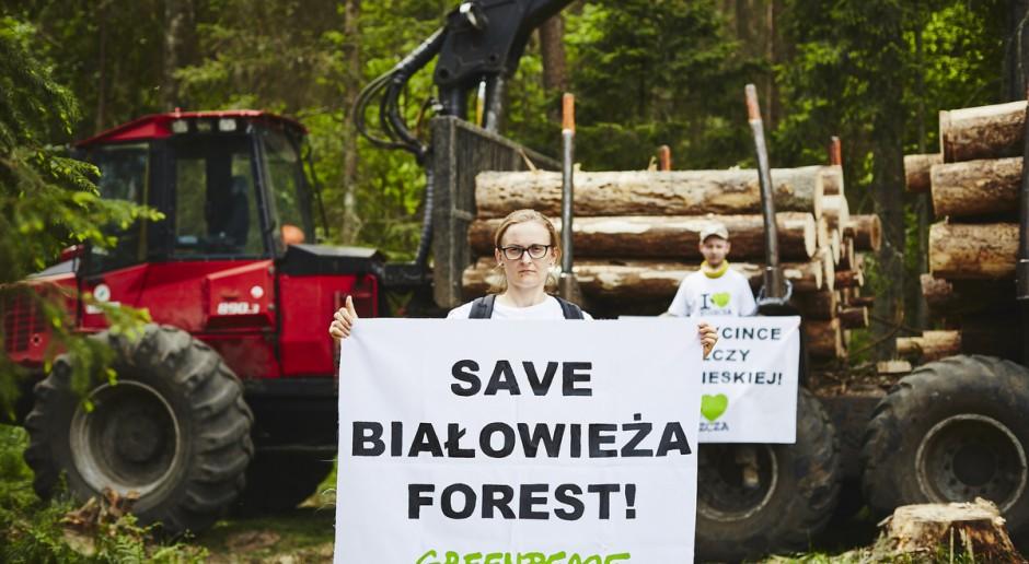 Ekolodzy: Decyzja KE do dobra wiadomość dla Puszczy Białowieskiej
