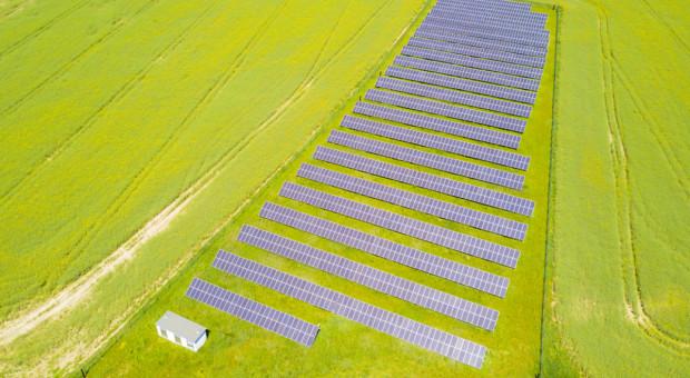 Dzierżawić czy nie dzierżawić grunty rolne pod fotowoltaikę?