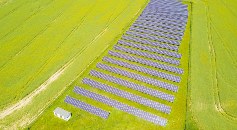 Dzierżawa gruntu pod farmy fotowoltaiczne - zalety i wady