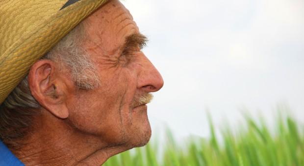 Raport ETO: Unijni rolnicy starzeją się