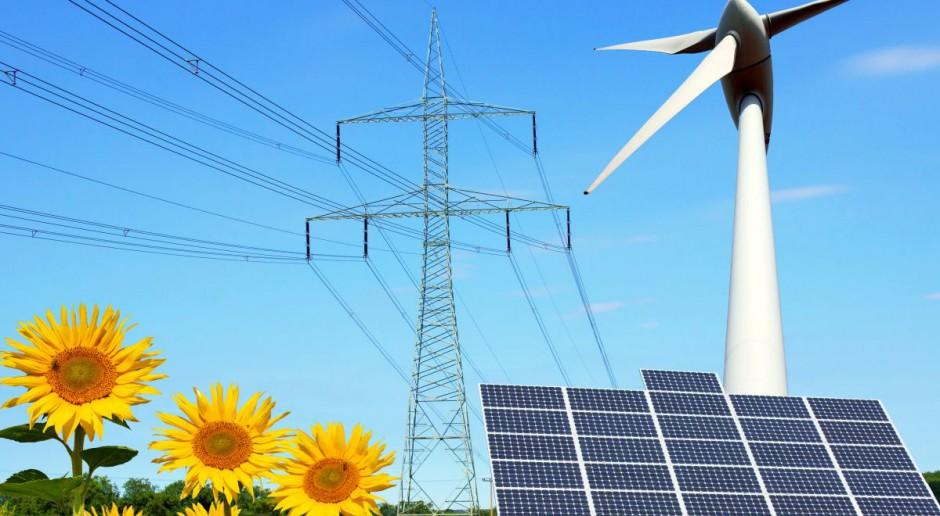 Aukcje OZE 2020: Wiatr wyczerpuje potencjał, fotowoltaika bardziej konkurencyjna