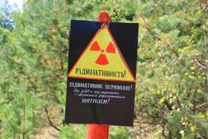 Białoruś stawia na radioaktywną żywność?