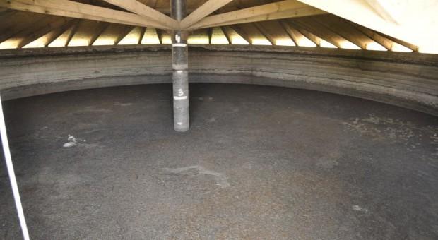 KZP-PTCH: Program działań ograniczających odpływ azotu uderzy w towarowe fermy trzody chlewnej