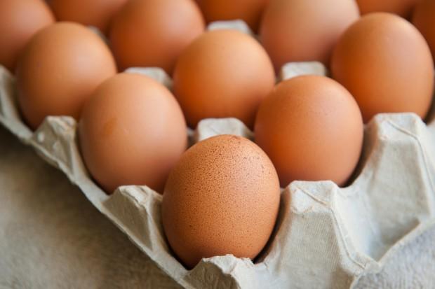 KE w lipcu otrzymała od Belgii informację o skażeniu jajek