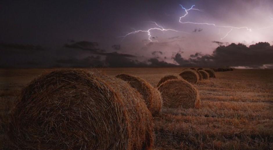 Wsparcie inwestycji odtwarzających potencjał produkcji rolnej