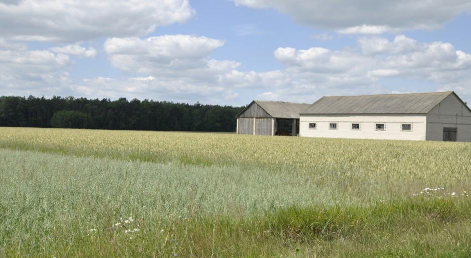 Rolnicy ze wschodniej Polski nie są zainteresowani działalnością pozarolniczą