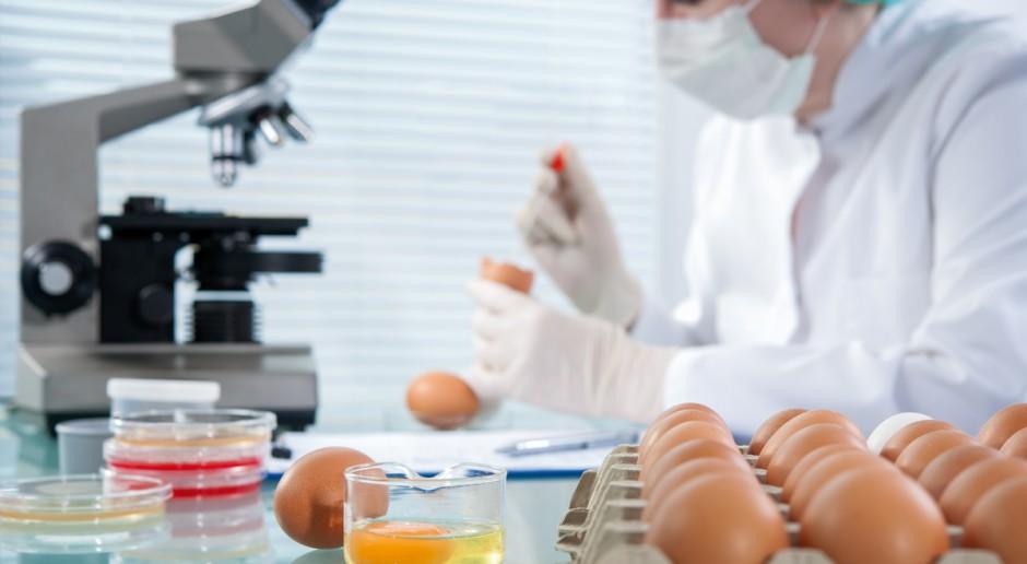 GIS: W Polsce wykryto jajka potencjalnie zanieczyszczone fipronilem; nie trafiły do konsumentów