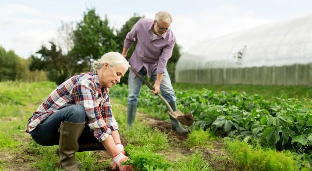RI Solidarność chce zmian w przepisach dot. emerytur dla rolników