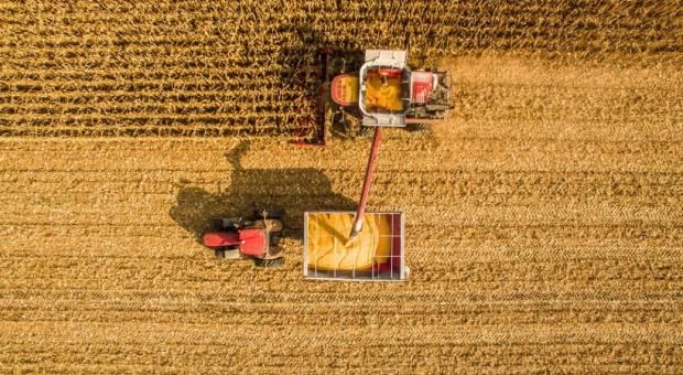 Zbiory 2020 w Rosji: Więcej zboża, mniej innych upraw