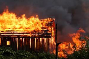 Świętokrzyskie: 8 sztuk bydła zginęło w pożarze budynku gospodarczego