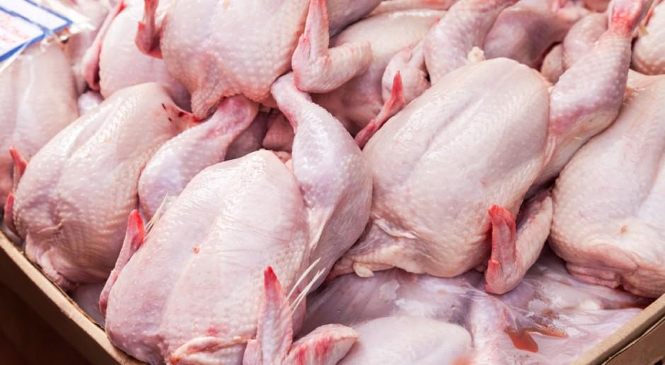 Główny Lekarz Weterynarii: Kurczaki z Niemiec były skażone fipronilem