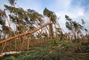 Kosiniak-Kamysz: PSL złoży projekt zmian w ustawie o stanie klęski żywiołowej