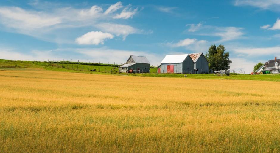 Przez zmiany klimatu Kanadyjczycy zapłacą więcej za żywność