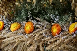 Abp Gądecki: Wyrażamy wdzięczność i szacunek dla rolników