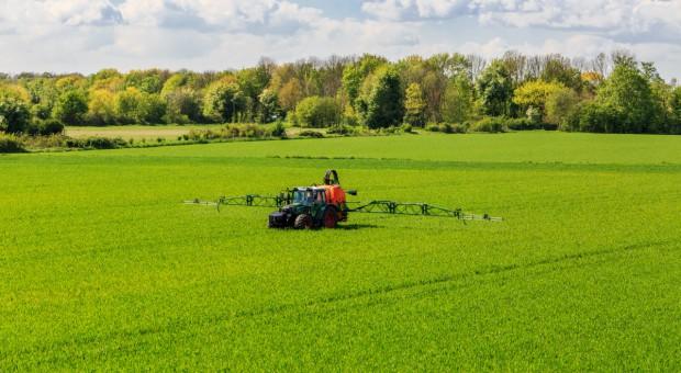 Pasy uprawne wolne od pestycydów?